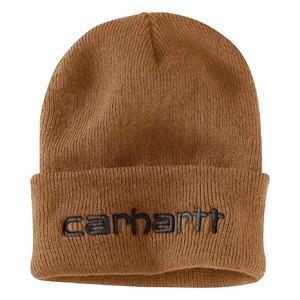 Carhartt Teller Hat 104068